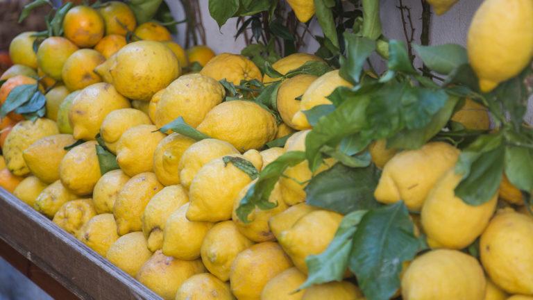 Limoni Amalfi 768x432 - Pompeii - Sorrento - Positano