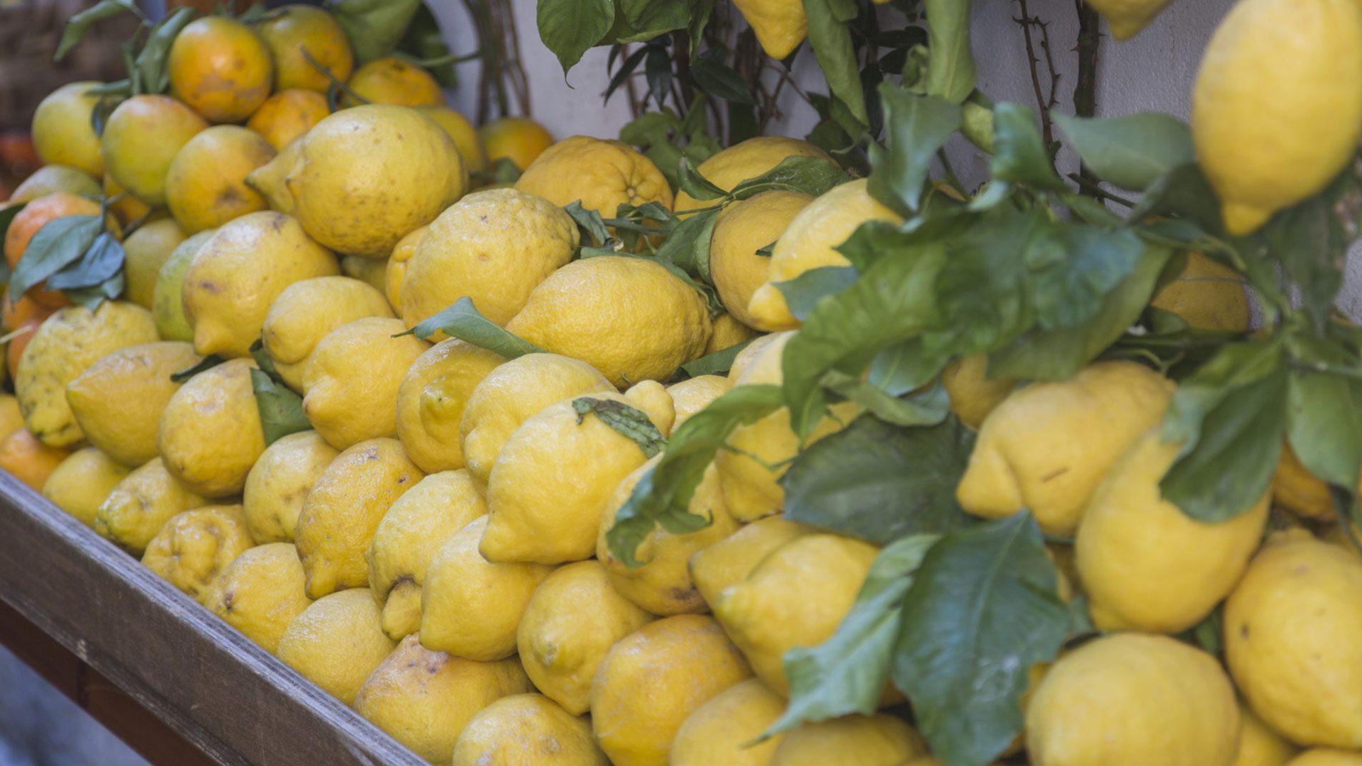 Letusdrive tours Napoli Naples Napoles Italia, Italy Pompeya – Sorrento - Positano limoni lemons