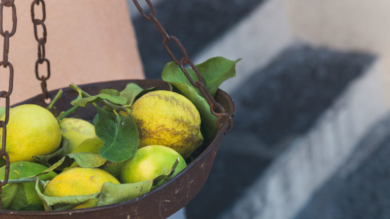 Limoncello 1 768x432 - Italy food tour